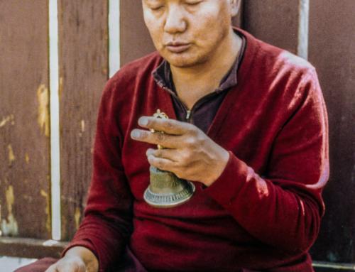 I veri praticanti di Dharma accolgono le difficoltà